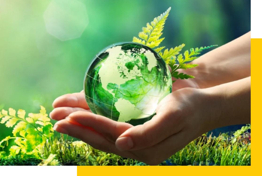 imagenes medio ambiente